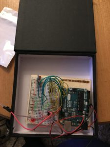 Arduino in prototype box